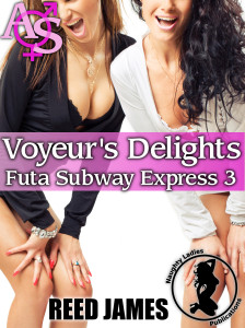 futasubwayexpress3cover