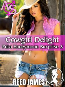 futahoneymoonsurprise3cover