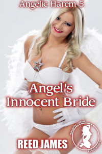 angelicharem5cover