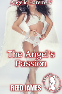 angelicharem17cover