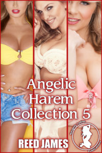 angelicharemcollection5cover